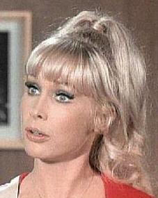 barbara eden tv series